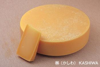 槲(かしわ)KASHIWA